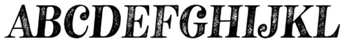 Neato Serif Rough Italic Font UPPERCASE