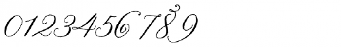 Nelly Script Flourish Font OTHER CHARS