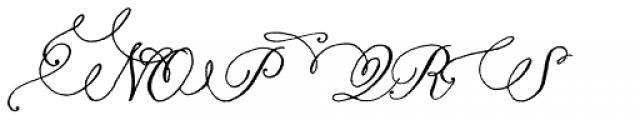 Nelly Script Flourish Font UPPERCASE