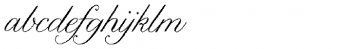 Nelly Script Flourish Font LOWERCASE