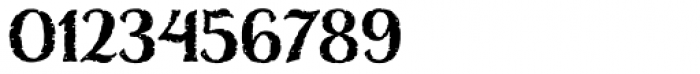 Nelson Basic-Bold Font OTHER CHARS