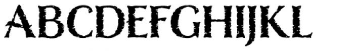 Nelson Basic-Bold Font UPPERCASE
