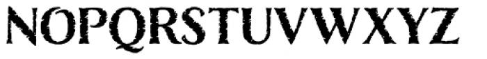 Nelson Basic-Bold Font LOWERCASE
