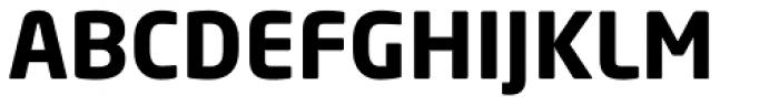 Neo Sans Paneuropean W1G Bold Font UPPERCASE