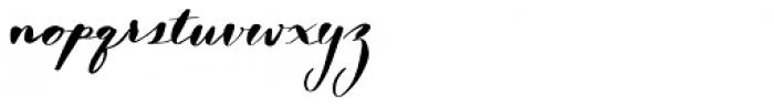 Nerine Regular Font LOWERCASE