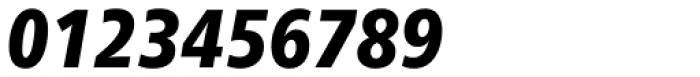 Neue Frutiger Paneuropean W1G Condensed Black Italic Font OTHER CHARS