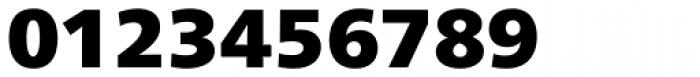 Neue Frutiger Paneuropean W1G ExtraBlack Font OTHER CHARS