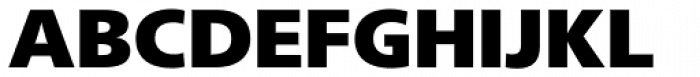 Neue Frutiger Paneuropean W1G ExtraBlack Font UPPERCASE