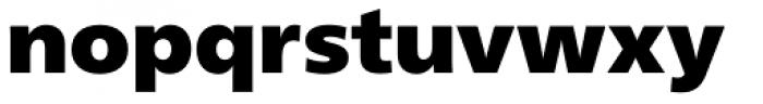 Neue Frutiger Paneuropean W1G ExtraBlack Font LOWERCASE
