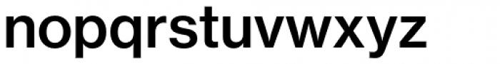 Neue Haas Grotesk Std Text 65 Medium Font LOWERCASE