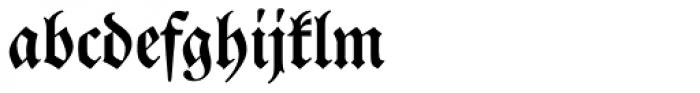 Neue Luther Frak SB Medium Font LOWERCASE