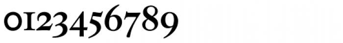 Neue Luthersche Fraktur Medium Font OTHER CHARS
