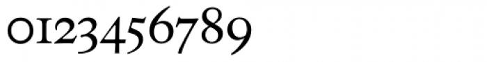 Neue Luthersche Fraktur Regular Alt Font OTHER CHARS
