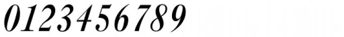 New Caslon B EF Medium Italic Font OTHER CHARS