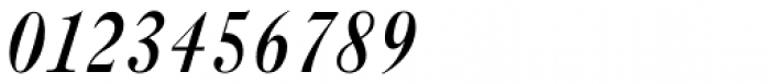 New Caslon SB Medium Italic Font OTHER CHARS