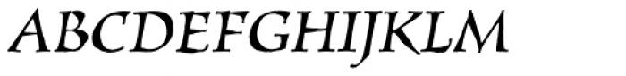 New Pelican SXSN Italic Font UPPERCASE