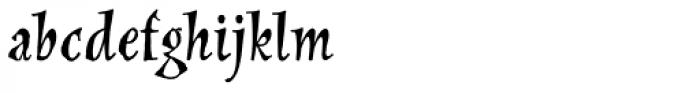New Pelican SXSN Regular Font LOWERCASE