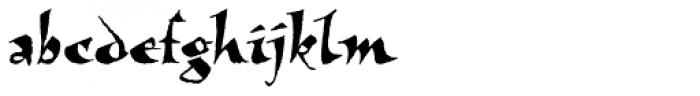 New Visigoth RXSN Regular Font LOWERCASE