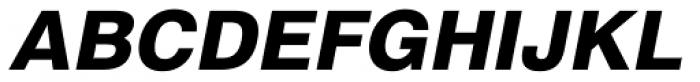 Newhouse DT ExtraBold Oblique Font UPPERCASE