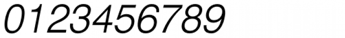 Newhouse DT Light Oblique Font OTHER CHARS
