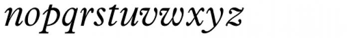 News Plantin Std Italic Font LOWERCASE