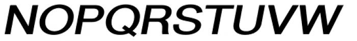 Newsanse Bold Italic Font UPPERCASE