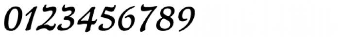 Newt Serif Demi Italic Font OTHER CHARS