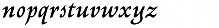 Newt Serif Demi Italic Font LOWERCASE