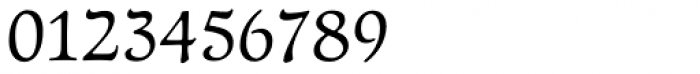 Newt Serif Font OTHER CHARS
