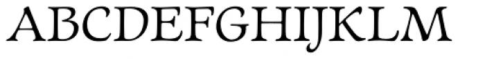 Newt Serif Font UPPERCASE