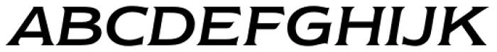 Newtext Italic Font UPPERCASE