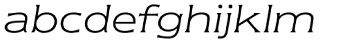 Newtext Std Light Italic Font LOWERCASE