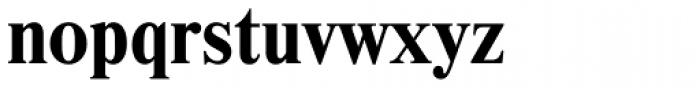 Newton Bold Font LOWERCASE