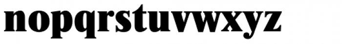 Newton ExtraBold Font LOWERCASE