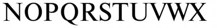 Newton Font UPPERCASE