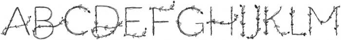 NF-Aralia otf (400) Font UPPERCASE