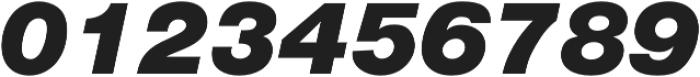 Nimbus Sans Black Italic otf (900) Font OTHER CHARS