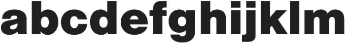 Nimbus Sans Black otf (900) Font LOWERCASE