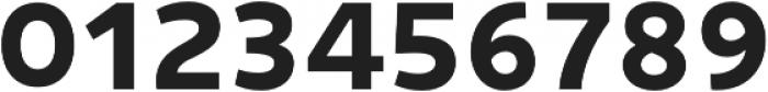 Niva SmallCaps Bold otf (700) Font OTHER CHARS