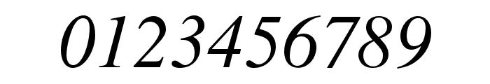 NimbusRomNo9L-RegIta Font OTHER CHARS