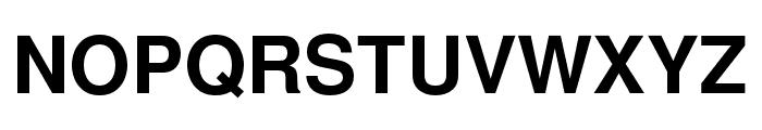 NimbusSanL-Bol Font UPPERCASE