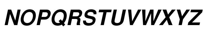 NimbusSanL-BolIta Font UPPERCASE