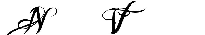 Nina Script  Medium Font UPPERCASE