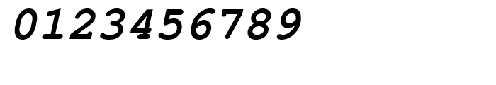 Nimbus Mono L Bold Oblique Font OTHER CHARS