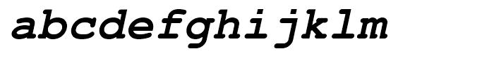 Nimbus Mono L Bold Oblique Font LOWERCASE