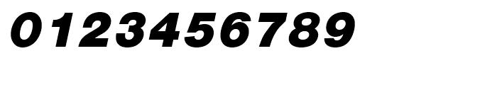 Nimbus Sans L Black Italic Font OTHER CHARS