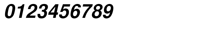 Nimbus Sans L Bold Italic Font OTHER CHARS