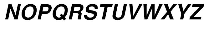 Nimbus Sans L Bold Italic Font UPPERCASE