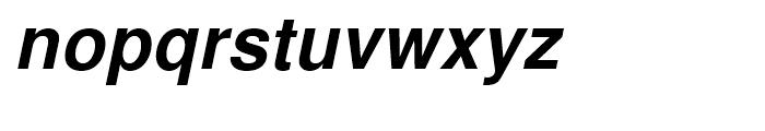 Nimbus Sans L Bold Italic Font LOWERCASE