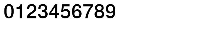 Nimbus Sans L Medium Font OTHER CHARS
